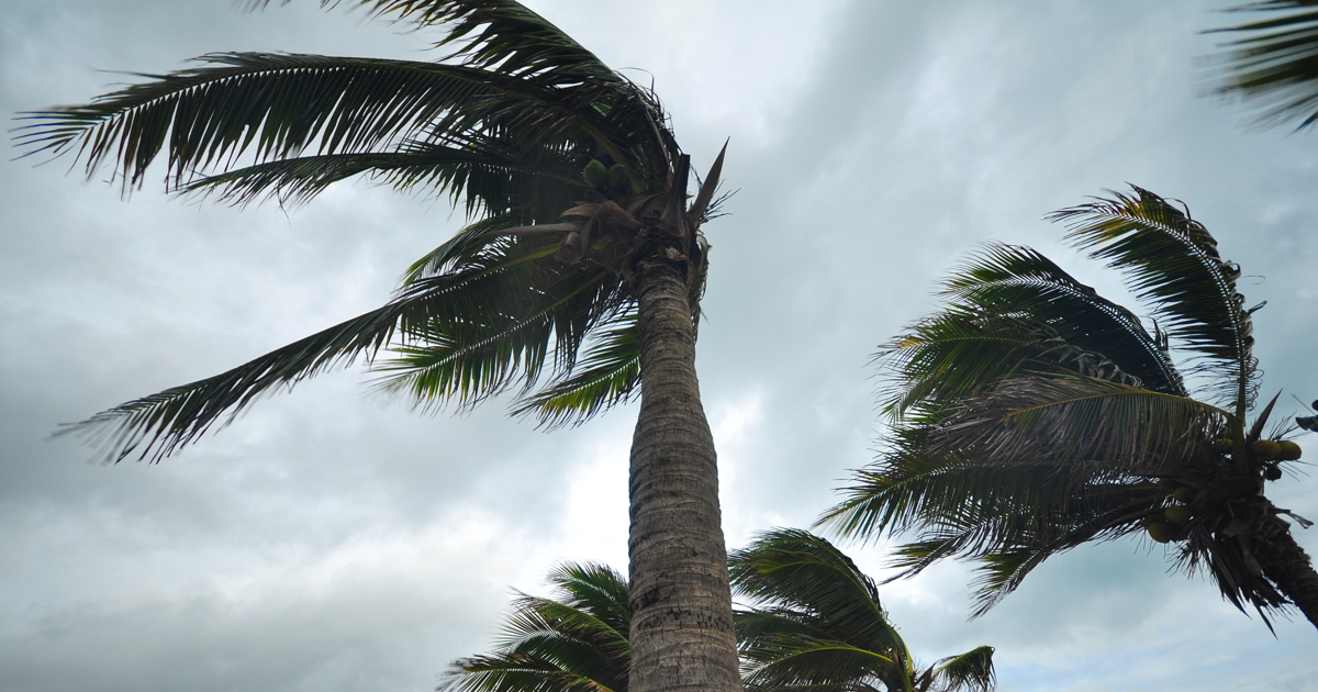 Severe cyclone hits eastern Indian coast with wind, rain