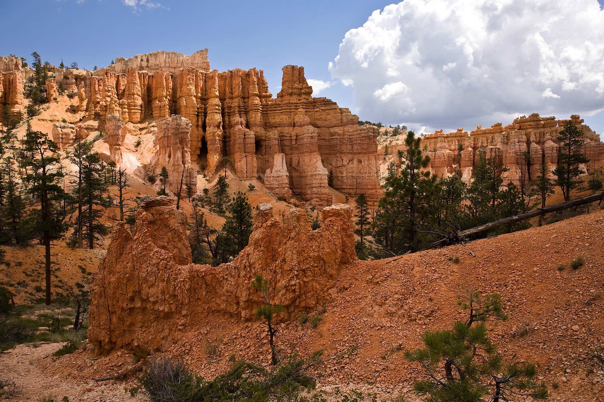 temperature in bryce canyon