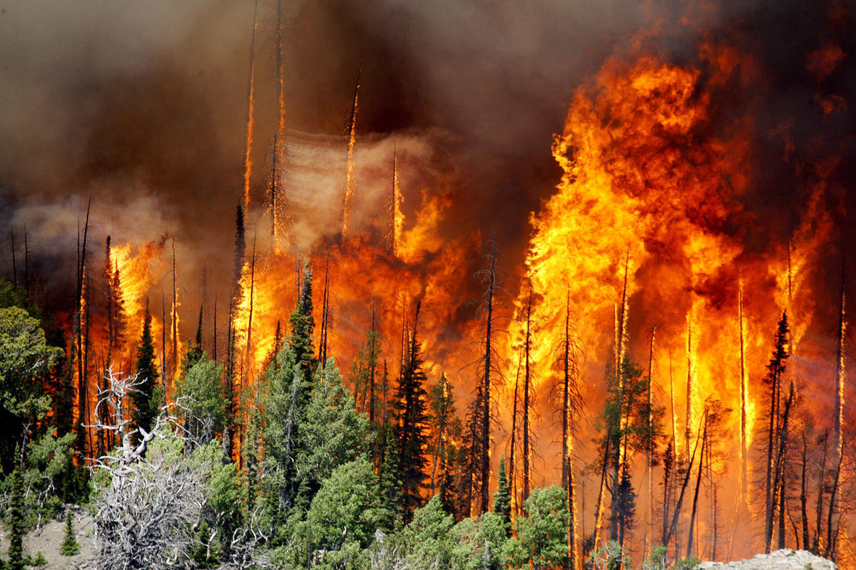 Man charged in massive Utah wildfire ordered to trial