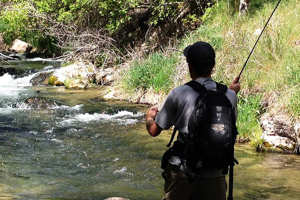 Fly fishing the mighty green river for Green river fly fishing report