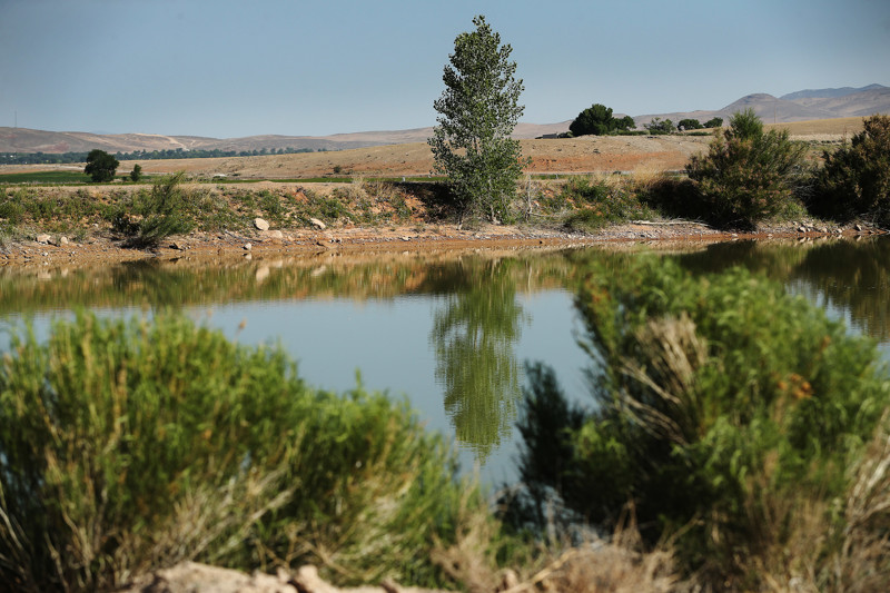 A reservoir at M&K Farms in Centerfield is pictured on Friday, June 8, 2018. Sanpete County farmers say they have never seen the water supply as dire as this year.