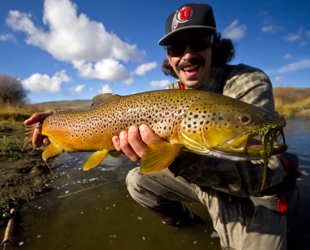 Fly fishing in utah for Trout fishing utah